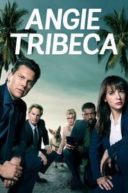 Voir Serie Angie Tribeca streaming