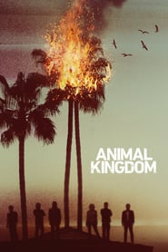 Voir Serie Animal Kingdom streaming