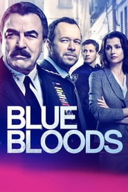 Voir Serie Blue Bloods streaming