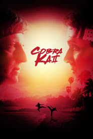 voir serie Cobra Kai 2018 streaming