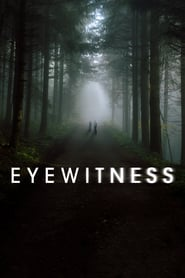 Voir Serie Eyewitness streaming