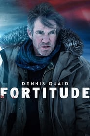 Voir Serie Fortitude streaming