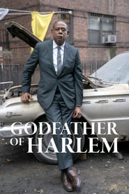 Voir Serie Godfather of Harlem streaming