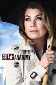 Voir Serie Grey's Anatomy streaming