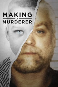 Voir Serie Making a Murderer streaming