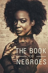 Voir Serie The Book of Negroes streaming