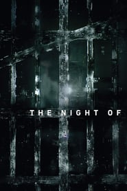 Voir Serie The Night Of streaming