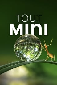 Voir Serie Tiny World streaming
