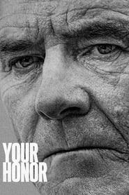 Voir Serie Your Honor streaming